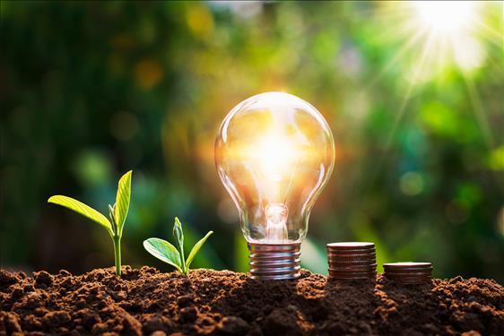 Tribunal publica edital de chamamento público para projetos de eficiência energética